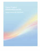 calm_project_evaluation_report_final